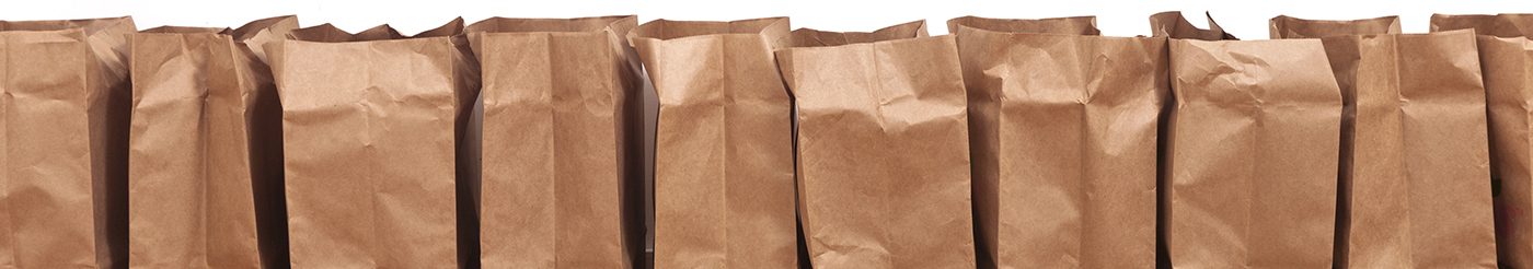 grocery brown bags