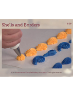 Shells and Borders